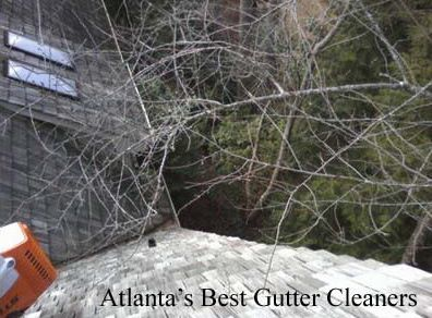 Kennesaw's Best Gutter Cleaners Before and After Tree Pruning