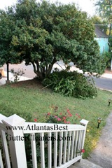 Kennesaw's Best Gutter Cleaners does tree pruning of limbs coming in range of the gutters.